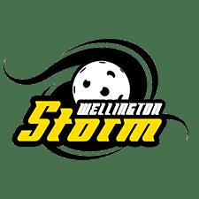 storm-logo-web